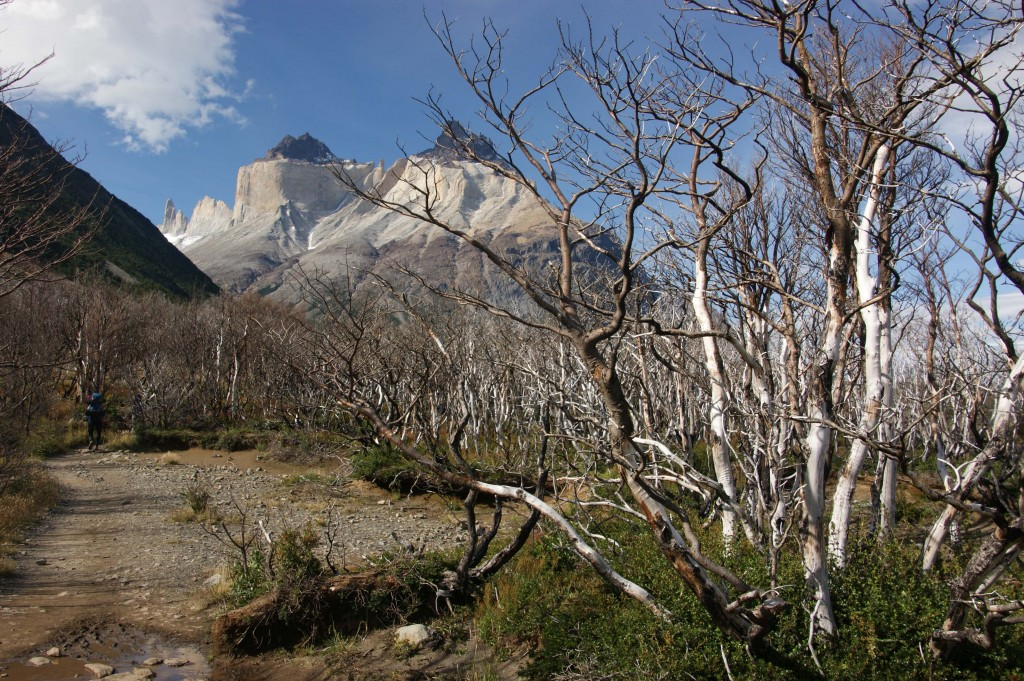 Chilean Patagonian Landscapes I